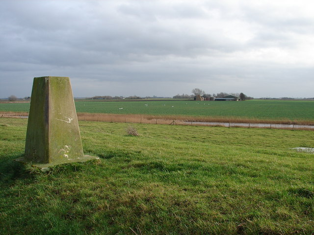 Trig Point, Swans and Kingsland Farm