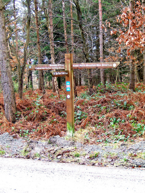 Fingerpost in Wyre Forest
