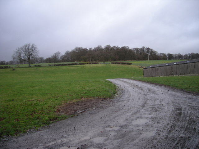 Driveway to farm buildings at Upper Stanway