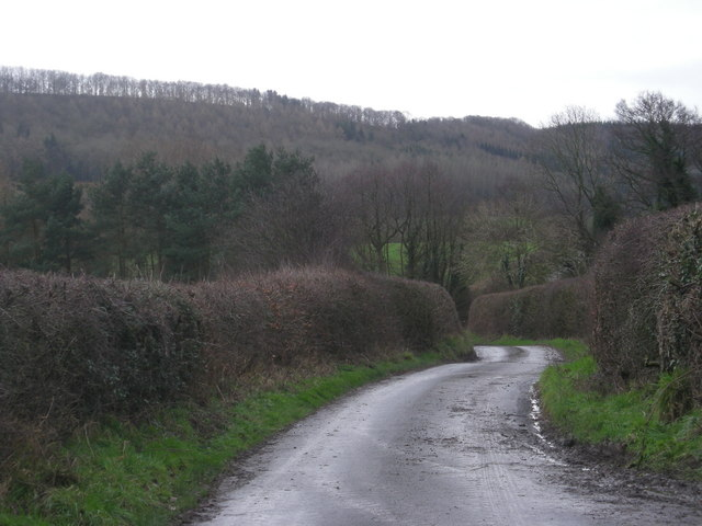 Downhill from Whitefields Farm