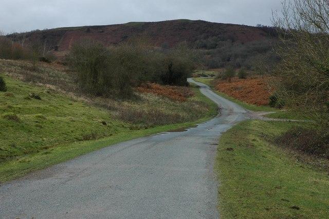 Road on Castlemorton Common