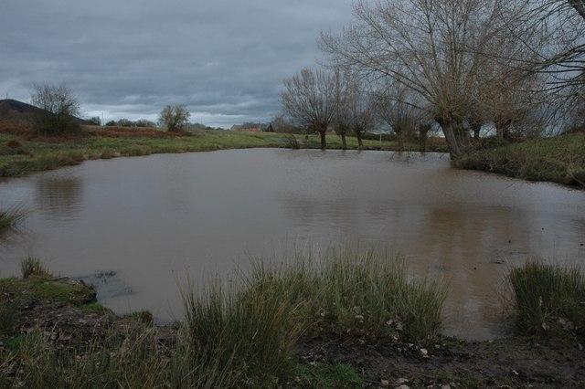 The Fish Pond, Castlemorton Common