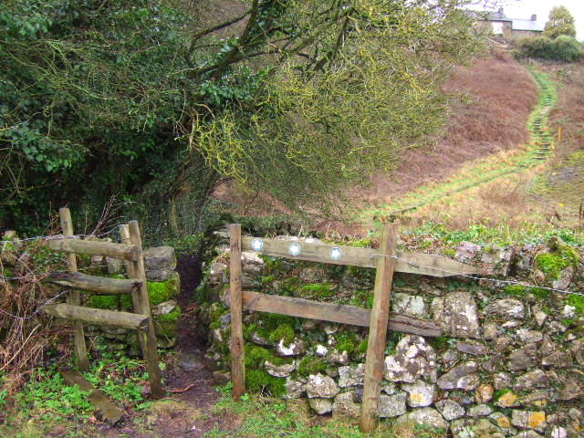 Stile and steps