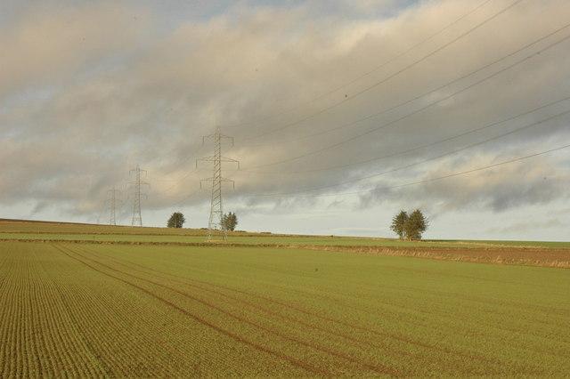 Powerlines crossing a field