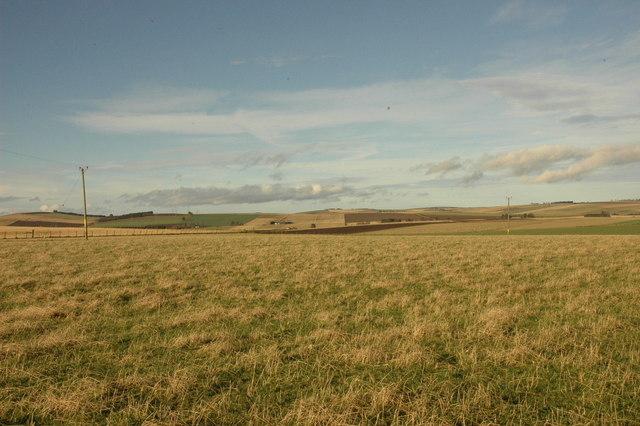Farmland near Redhill