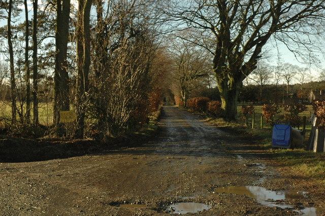 Farm road to Blackford Home Farm
