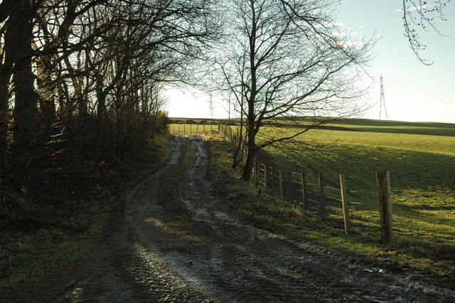 Farm track to Hill of Blackford