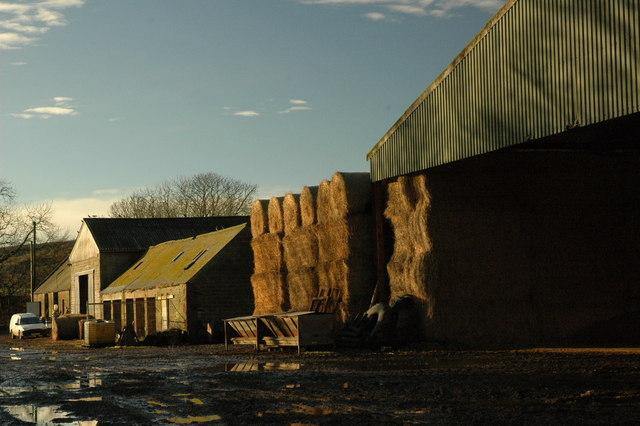Overhill Farm