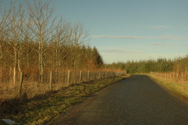 Country road north of Cross of Jackston