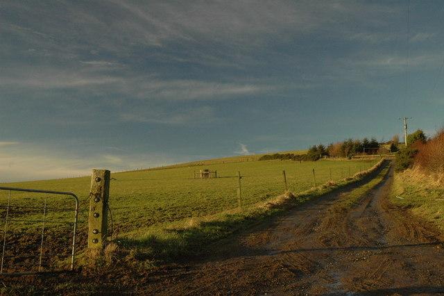 Farm track to Crannabog