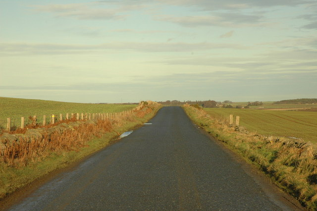 Country road near Petty Farm