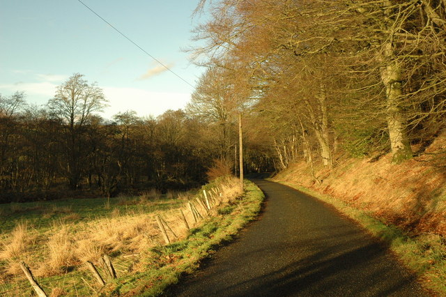 Country road to Rothie Vale