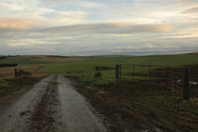 Minor road and field entrances near Logg Wood