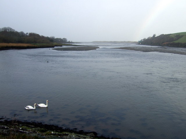 Newport estuary with swans and rainbow