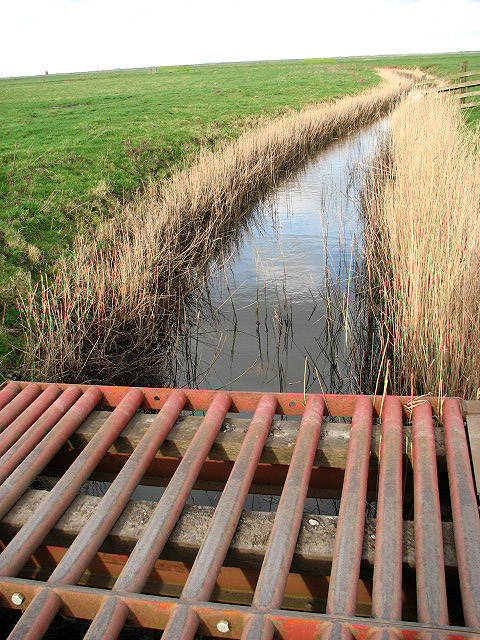 Cattle grid crossing a drainage ditch