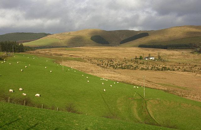 Fields north of Cwmystwyth