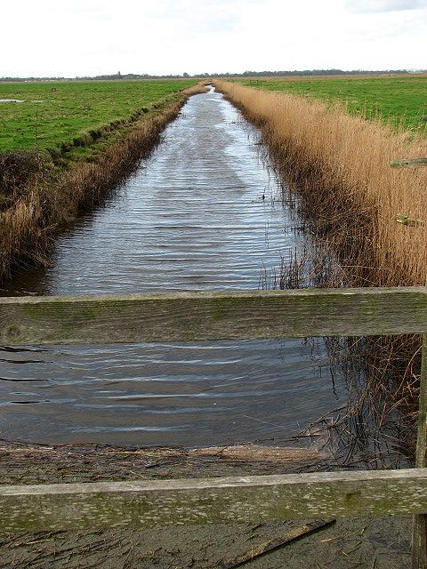View along a drain