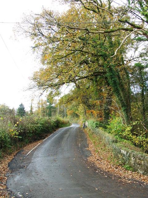 Dunrod Road