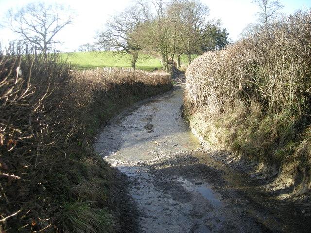 Dunstan's Lane ford