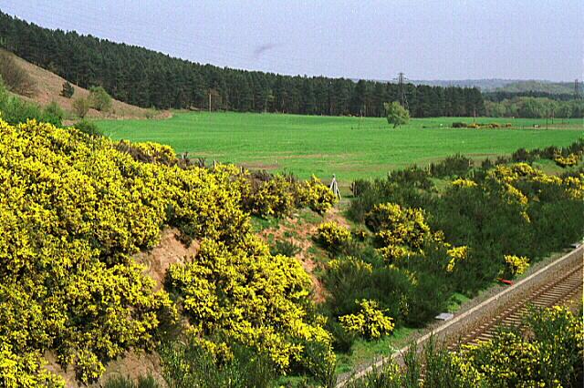 Annesley - Robin Hood Hills