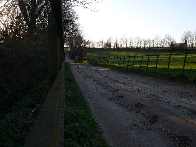 Thomas Hardy's lane Higher Bockhampton