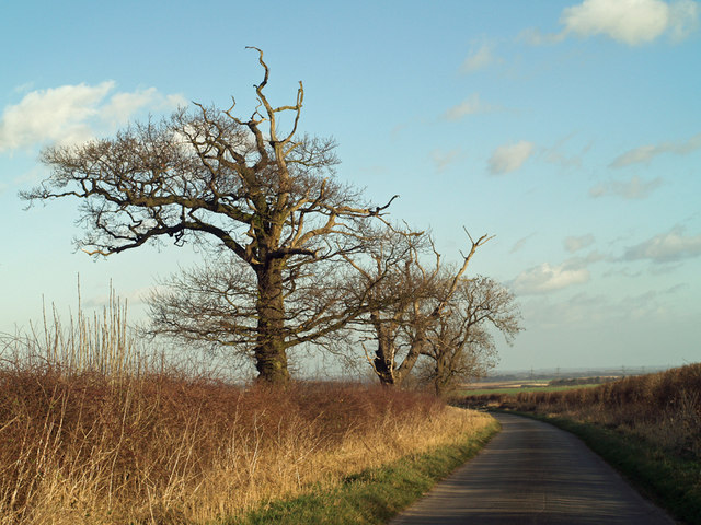 The Saxby to Barton Road