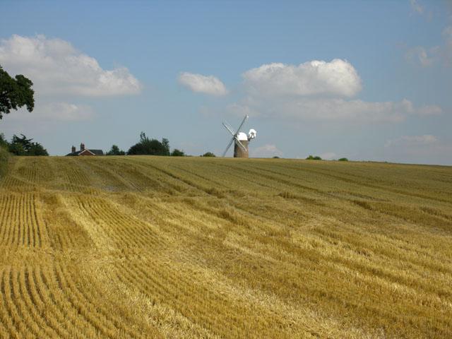 Field east of Wilton