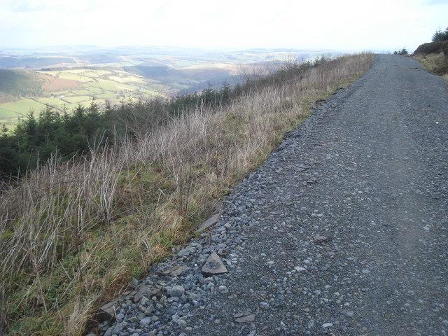 Radnor Forest Track