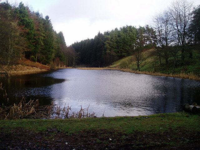 Ferniehaugh Pond