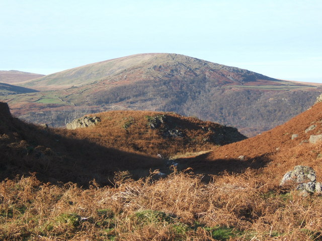 Bracken covered hillsides above Stonestar