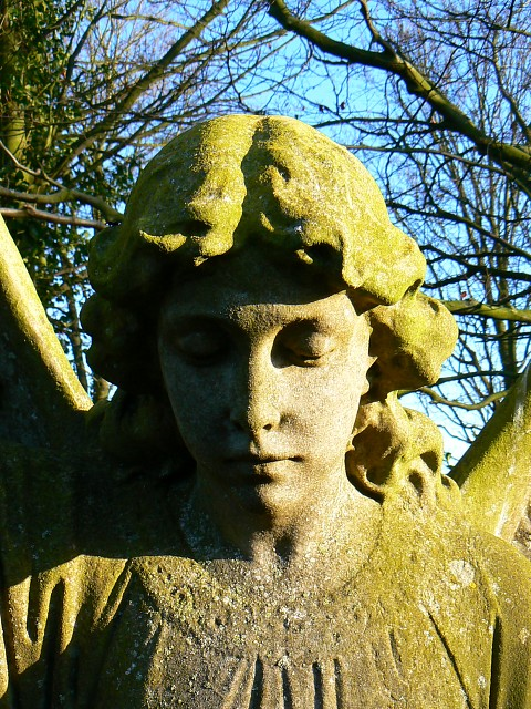 An angelic face in the cemetery, Kingston Lisle