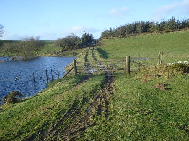 Track to Molecatchers Wood