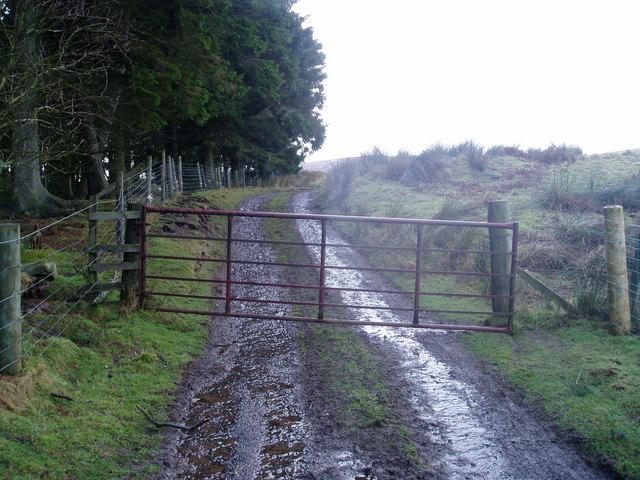 Locket Gate