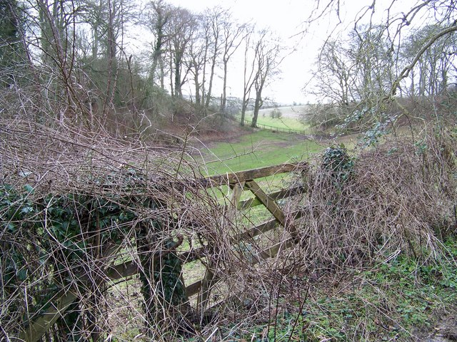 Gate and small valley, Broad Chalke