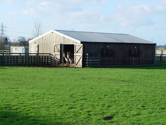 Stabling for Donkeys, Cottingham