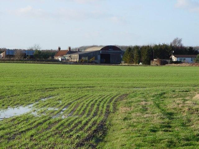 Poplar Farm, Cottingham