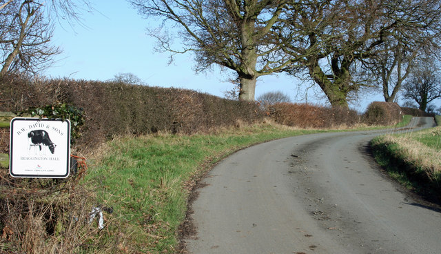 The Road To Bragginton