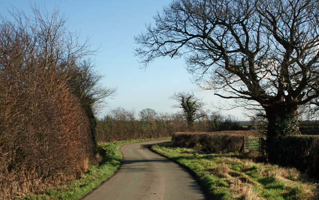 Bend In The Lane