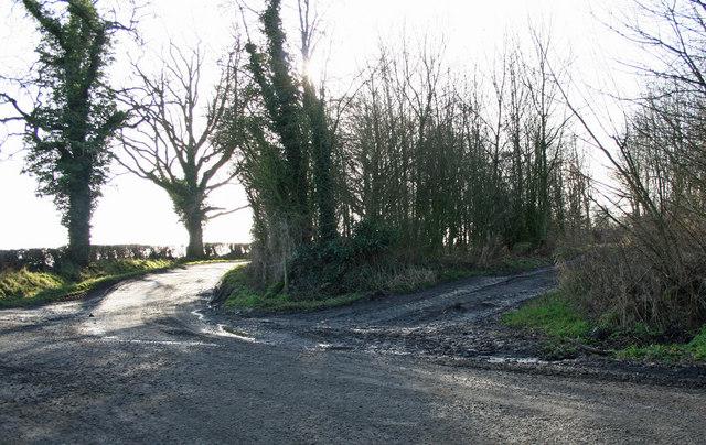 Wooden Junction