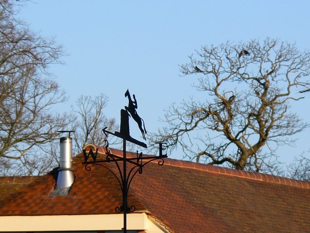 Roof and weathervane, Kingston Lisle
