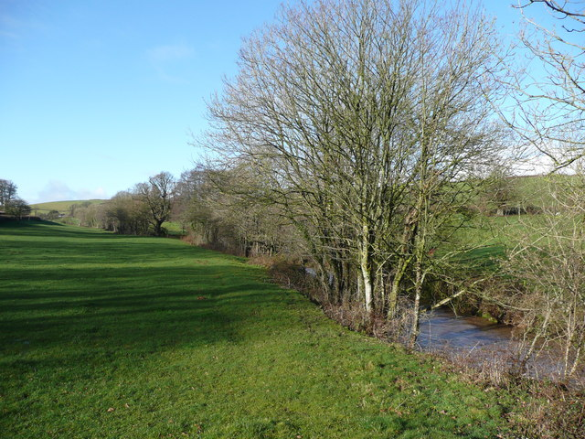 River Yeo - upstream