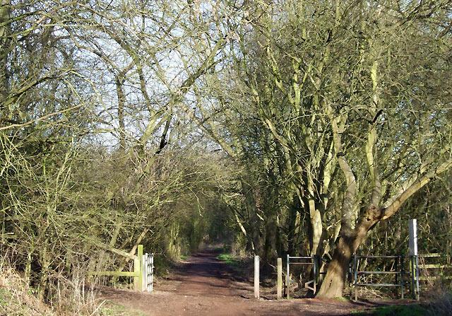 South Staffordshire Railway Walk, Lower Penn