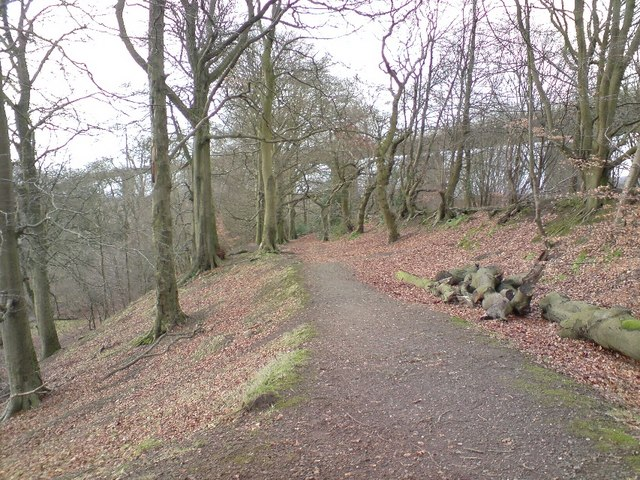 Path in Lusset Glen