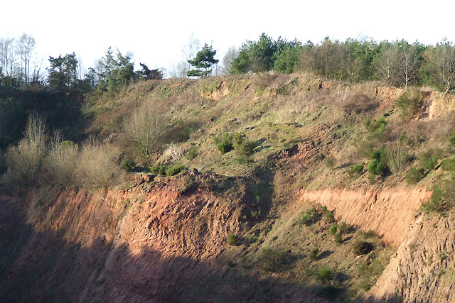 Triassic Red Sandstone, near Halfpenny Green, Staffordshire