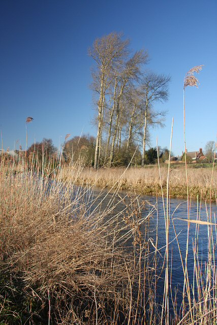 River Lark at Icklingham
