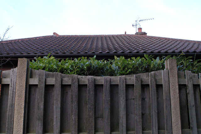 Fence and Roof, Bramcote