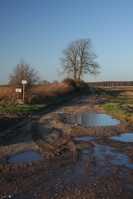 Track to Lackford Estate (in winter)
