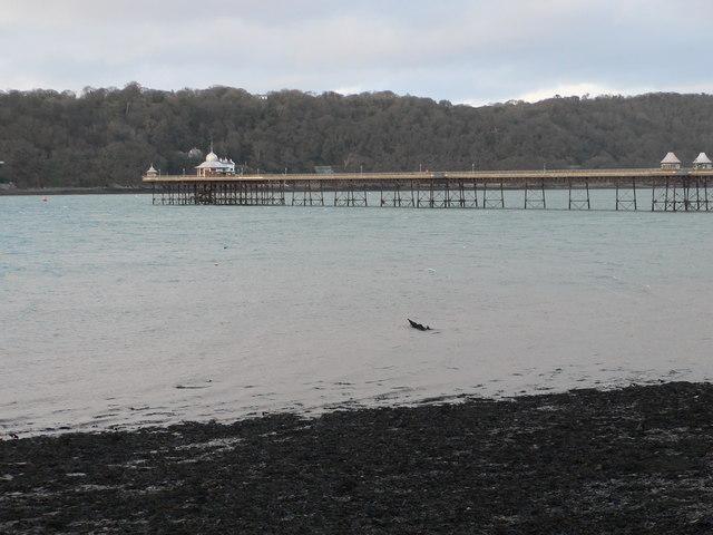 Garth Pier, Bangor