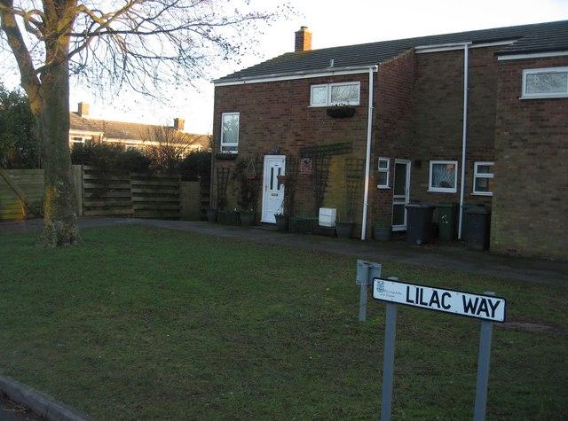 Lilac Way corner housing