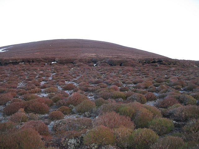 Peat workings, Meikle Conval